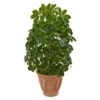 Nearly Natural 35-Inch Baby Schefflera Artificial Plant In Terra Cotta Planter