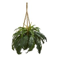 Nearly Natural Marginatum Plant in Hanging Basket