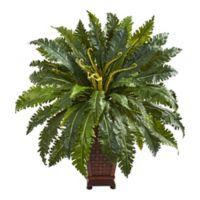 Nearly Natural 3-Foot Marginatum Plant in Decorative Planter