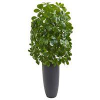 Nearly Natural 3.5-Foot Schefflera Artificial Plant in Grey Planter