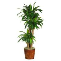 Nearly Natural 62-Inch Dracena Silk Plant with Basket