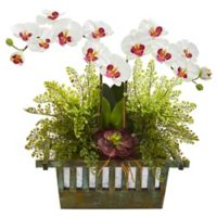 Nearly Natural 23-Inch Artificial White Orchid, Succulent and Maiden Hair in Planter