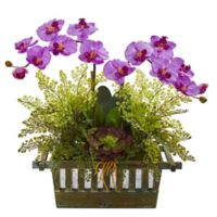 Nearly Natural 23-Inch Artificial Mauve Orchid, Succulent and Maiden Hair in Planter
