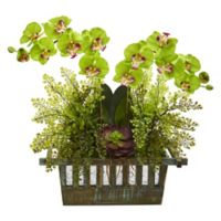 Nearly Natural 23-Inch Artificial Green Orchid, Succulent and Maiden Hair in Planter
