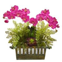Nearly Natural 23-Inch Artificial Dark Pink Orchid, Succulent and Maiden Hair in Planter