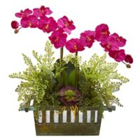 Nearly Natural 23-Inch Artificial Pink Orchid, Succulent and Maiden Hair in Planter