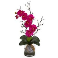 Nearly Natural 24-Inch Artificial Pink Phalaenopsis Orchid in Vase