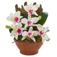 Nearly Natural 15-Inch Artificial White Cattleya Orchid in Vase