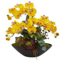 Nearly Natural 21-Inch Artificial Yellow Phalaenopsis Orchid and Succulent Garden