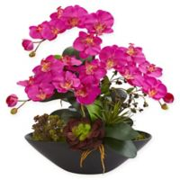 Nearly Natural 21-Inch Artificial Dark Pink Phalaenopsis Orchid and Succulent Garden