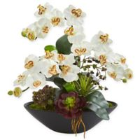 Nearly Natural 21-Inch Artificial Cream Phalaenopsis Orchid and Succulent Garden