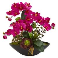 Nearly Natural 21-Inch Artificial Pink Phalaenopsis Orchid and Succulent Garden
