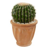 Nearly Natural 19-Inch Artificial Cactus Plant in Planter