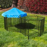 Large Modular Dog Pen with Blue Umbrella