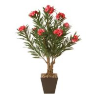 National Tree Company® 32-Inch Artificial Oleandro Plant in Ceramic Pot