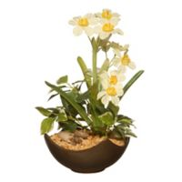 National Tree Company® 9-Inch Artificial Narcissus Plant in Pot