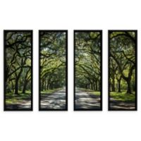Oak Trees Spanish Moss Georgia 24-Inch x 32-Inch Canvas Wall Art (Set of 4)