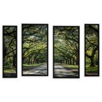 4-Piece Oak Trees Spanish Moss Georgia 24-Inch x 36-Inch Canvas Wall Art