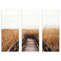 ArtWall Fall Walk III 24-Inch x 36-Inch 3-Piece Multi Panel Gallery Wrapped Wall Art