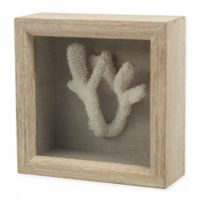 Staghorn Coral Shadow Box Sculpture