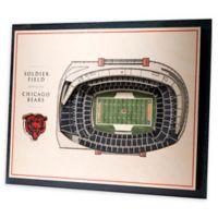 NFL Chicago Bears 5-Layer Stadium Views 3D Wall Art