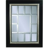 Fiona 54-Inch x 42-Inch Rectangle Wall Mirror in Black/Silver