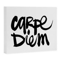 "Deny Designs Kal Barteski ""Carpe Diem"" 16-Inch x 20-Inch Canvas Wall Art"