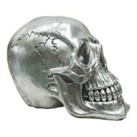Moe's Home Collection Yorick Skull Sculpture in Gunmetal