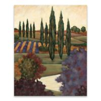 Tuscan View I Multicolor Canvas Wall Art