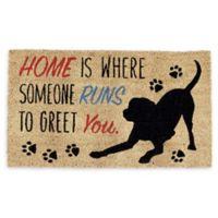 """Design Imports Home Dog 18"""" x 30"""" Coir Door Mat in Tan"""