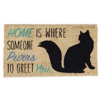 """Design Imports Home Cat 18"""" x 30"""" Coir Door Mat in Tan"""