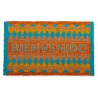 """Design Imports Bienvenido 18"""" x 30"""" Coir Door Mat in Blue"""
