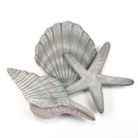 Shell Collection II 20-Inch x 15-Inch Wood Wall Art