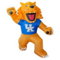 University of Kentucky 7-Foot Inflatable Mascot