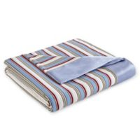 Micro Flannel® Awning Stripe All Seasons Reversible Twin Blanket in Blue/Beige