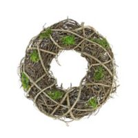 Northlight® 14-Inch Artificial Moss and Twig Spring Wreath