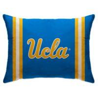 University of California, Los Angeles Rectangular Microplush Standard Bed Pillow