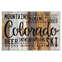 "Sweet Bird & Co. ""Colorado"" Reclaimed Wood Wall Art"