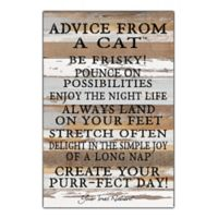 "Sweet Bird & Co. ""Advice From A Cat"" 12-Inch x 18-Inch Wood Wall Art"