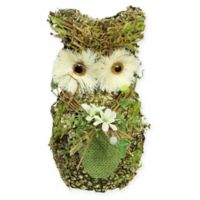 Northlight 8.5-Inch Spring Owl Figurine
