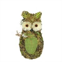 Northlight 11-Inch Spring Owl Figurine