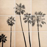 Deny Designs 9-Piece Five Palms Square Wall Art in Black