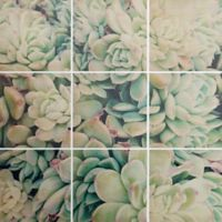 Deny Designs 9-Piece My Desert Square Wall Art in Blue