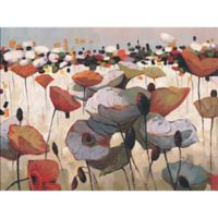 ArtMaison Canada Desert Flower 30-Inch x 40-Inch Canvas Wall Art
