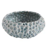 Round Ceramic Planter in Blue