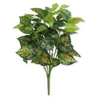Northlight 19.5-Inch Artificial Green and Yellow Dieffenbachia Floral Bush
