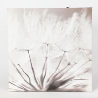 Winsome House Dandelion Canvas Wall Art (Set of 3)