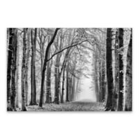 Black and White Forest 24-Inch x 36-Inch Canvas Wall Art