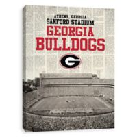 University of Georgia News Stadium Printed Canvas Wall Art
