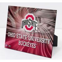 Ohio State University Football PleXart